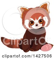 Clipart Of A Cute Adorable Baby Red Panda Sitting Royalty Free Vector Illustration