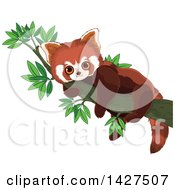 Clipart Of A Cute Adorable Baby Red Panda Resting In A Tree Royalty Free Vector Illustration
