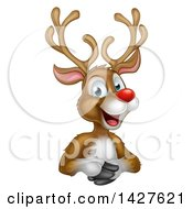 Clipart Of A Cartoon Happy Rudolph Red Nosed Reindeer Over An Edge Royalty Free Vector Illustration by AtStockIllustration
