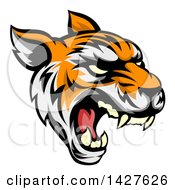 Clipart Of A Roaring Vicious Tiger Mascot Face Royalty Free Vector Illustration