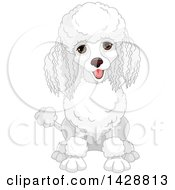 Clipart Of A Cute Happy White Poodle Dog Sitting Royalty Free Vector Illustration