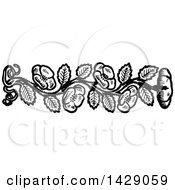 Clipart Of A Vintage Black And White Flower Border Royalty Free Vector Illustration