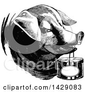 Clipart Of A Vintage Black And White Pig Carrying A Basket Royalty Free Vector Illustration