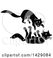 Vintage Black And White Cats Fighting