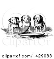 Vintage Black And White Sketched Group Of Puppies Around A Bowl