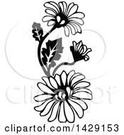 Clipart Of Vintage Black And White Daisies Royalty Free Vector Illustration by Prawny Vintage
