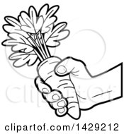 Black And White Hand Holding A Carrot