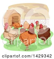Group Of Chickens Near A Coop