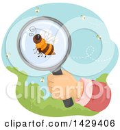 Clipart Of A Hand Observing A Honey Bee Through A Magnifying Glass Royalty Free Vector Illustration