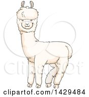 Clipart Of A Cute Alpaca Royalty Free Vector Illustration