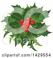 Clipart Of A Bunch Of Christmas Holly With Red Berries Royalty Free Vector Illustration
