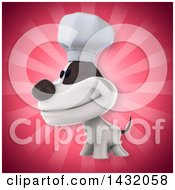Poster, Art Print Of 3d Chef Jack Russell Terrier Dog Over Rays