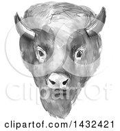 Gray Watercolor American Buffalo Bison Head