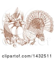 Clipart Of A Sketched Brown Turkey Bird With Produce Royalty Free Vector Illustration