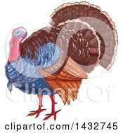 Clipart Of A Sketched Turkey Bird Royalty Free Vector Illustration by Vector Tradition SM