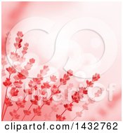 Red Floral Background With Text Space And Flares