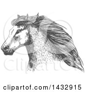 Clipart Of A Sketched Gray Horse Head Royalty Free Vector Illustration