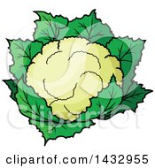 Clipart Of A Cartoon Head Of Cauliflower Royalty Free Vector Illustration