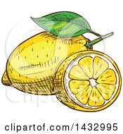 Clipart Of Sketched Lemons Royalty Free Vector Illustration by Vector Tradition SM