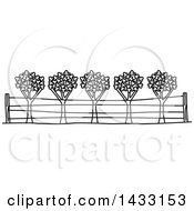 Clipart Of A Black And White Line Drawing Styled American Landmark Napa Valley Viticultural Area Royalty Free Vector Illustration