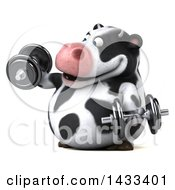 Clipart Of A 3d Chubby Cow Working Out With Dumbbells On A White Background Royalty Free Illustration