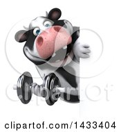 Clipart Of A 3d Chubby Cow Working Out With A Dumbbell On A White Background Royalty Free Illustration