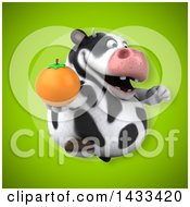 Clipart Of A 3d Chubby Cow Holding A Navel Orange Royalty Free Illustration