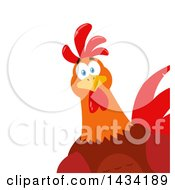 Flat Design Style Clipart Of A Chicken Rooster Bird Peeking Around A Corner Royalty Free Vector Illustration by Hit Toon
