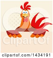 Chicken Rooster Bird Over A Sign On Halftone