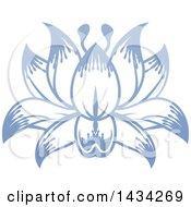Beautiful Blue Purple Water Lily Lotus Flower