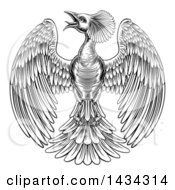 Black And White Woodcut Or Engraved Phoenix Firebird