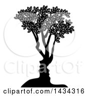 Black And White Tree With Abstract Faces Of A Couple Formed In The Trunk