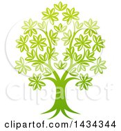 Clipart Of A Beautiful Gradient Green Tree Royalty Free Vector Illustration