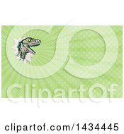 Clipart Of A Retro Lizard Rator Or Tyrannosaurus Rex Slashing Through And Green Rays Background Or Business Card Design Royalty Free Illustration by patrimonio