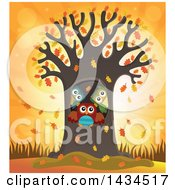 Family Of Owls In A Tree Hollow Against An Autumn Sunset