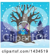 Clipart Of A Family Of Owls In A Tree Hollow In The Winter Royalty Free Vector Illustration