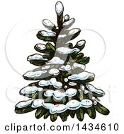Clipart Of A Sketched Snow Flocked Evergreen Tree Royalty Free Vector Illustration by Vector Tradition SM