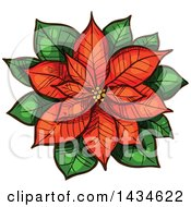 Sketched Red Christmas Poinsettia