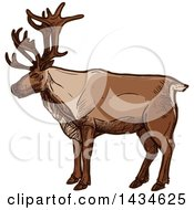 Clipart Of A Sketched Caribou Or Christmas Reindeer Royalty Free Vector Illustration by Vector Tradition SM