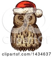 Sketched Christmas Owl Wearing A Santa Hat