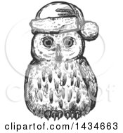 Sketched Dark Gray Christmas Owl Wearing A Santa Hat