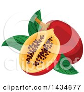 Clipart Of Tropical Exotic Tamarillo Fruit Royalty Free Vector Illustration