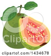 Clipart Of Tropical Exotic Guava Fruit Royalty Free Vector Illustration