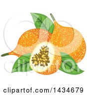 Clipart Of Tropical Exotic Passion Fruit Royalty Free Vector Illustration