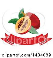 Clipart Of A Blank Banner With Tropical Exotic Tamarillo Fruit Royalty Free Vector Illustration