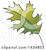 Clipart Of A Green Maple Leaf Royalty Free Vector Illustration by Lal Perera