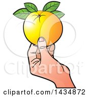 Hand Holding A Navel Orange