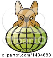 Clipart Of A French Bulldog Over A Green Grid Globe Royalty Free Vector Illustration