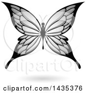 Clipart Of A Gray Butterfly With A Shadow Royalty Free Vector Illustration by cidepix