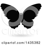 Black Silhouetted Butterfly With A Shadow